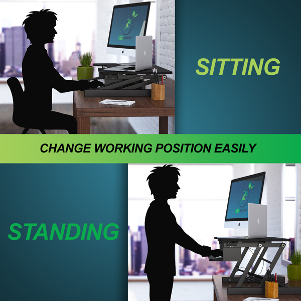 Lyfe Brands Standing Desk